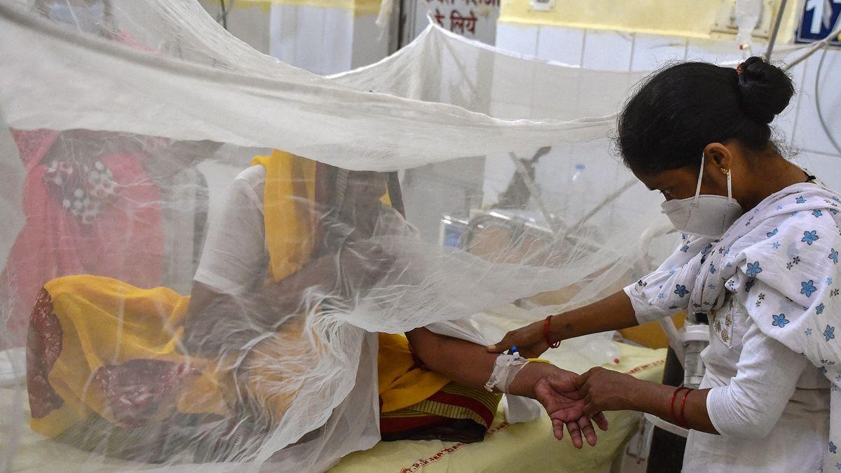 VIndii zabíjí záhadná horečka. Může ale jít třeba iodobře známou dengue