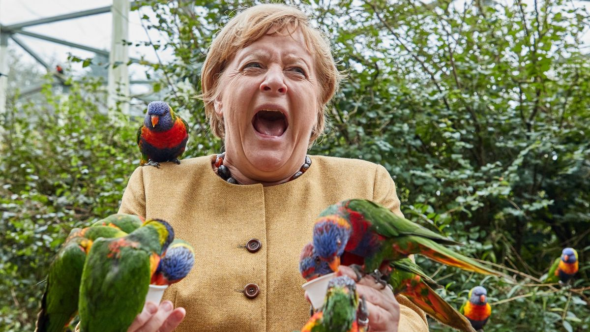 Brusel už nervózně čeká, jak to vBerlíně dopadne, říká český velvyslanec