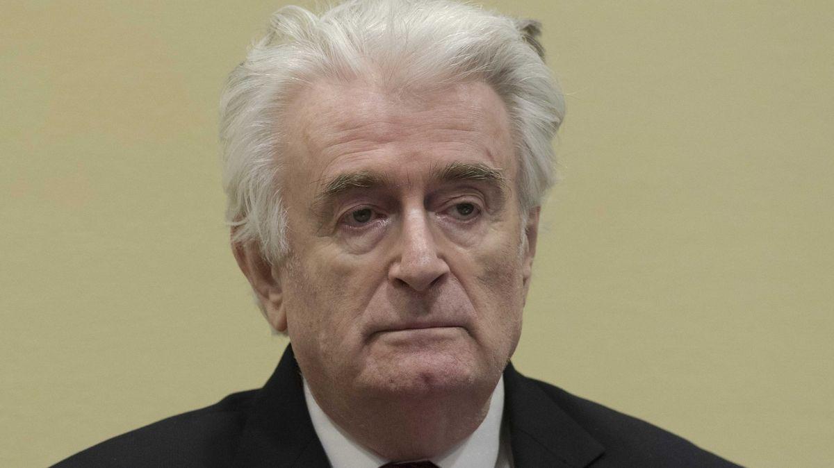 Karadžić si doživotní trest odpyká vBritánii. Hrozí mu pomsta vězňů