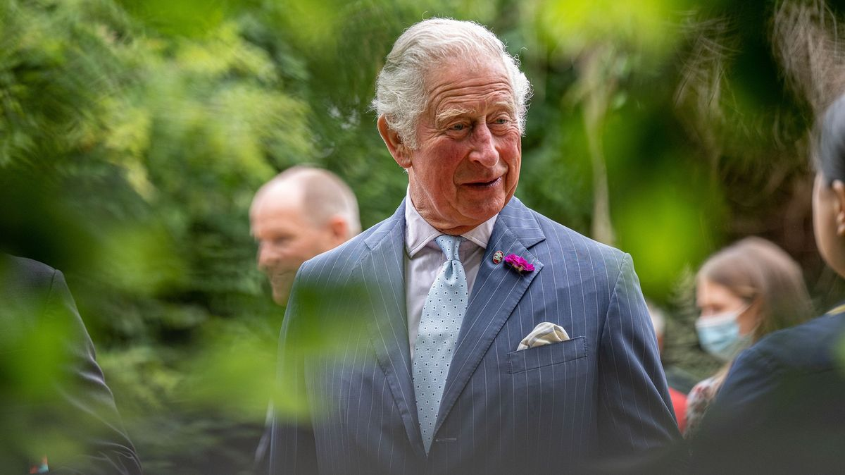 """Policie vyslýchala prince Charlese kvůli """"plánu zabít Dianu"""""""