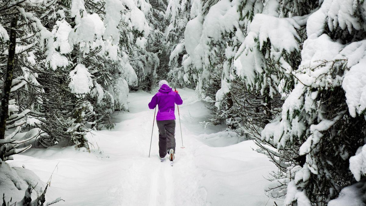 Běžkaři na Vysočině ovíkendu využili poslední sníh uFryšavy