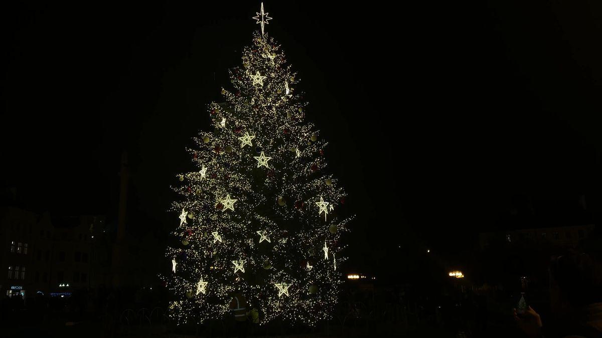 Praha rozsvítila vánoční strom