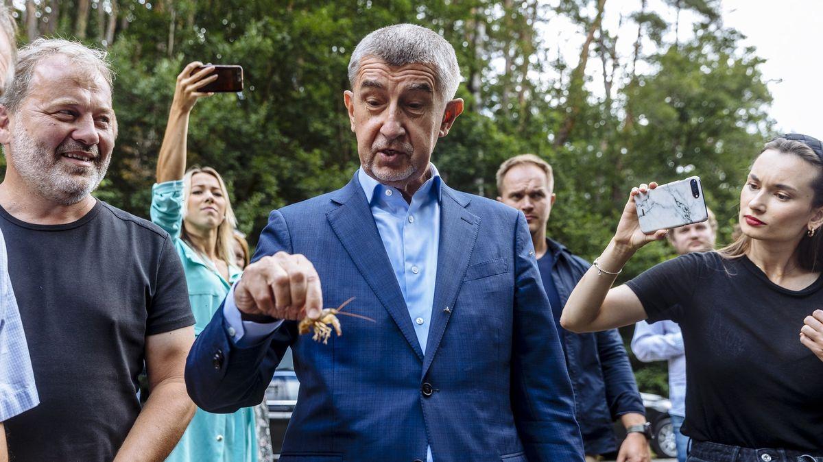 Komentář: Kdo půjde do boje smyslivci? Česko potřebuje pátý národní park