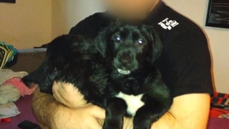 Kontroverzní chovatel psů skončil před soudem. Kvůli zcela jiné kauze
