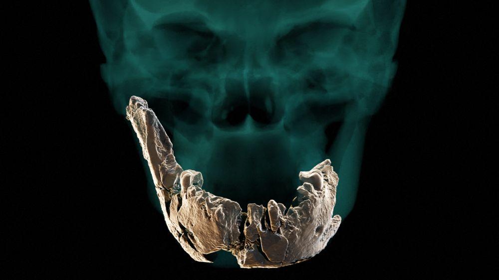 Archeologové objevili dosud neznámého předka člověka, podívejte se