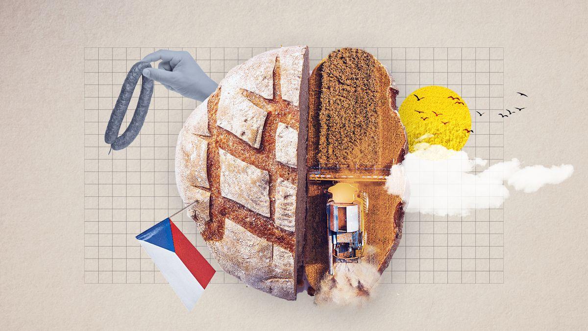 Překvapivé téma voleb: Jídlo musíme dovážet. Co zabírá česká pole?