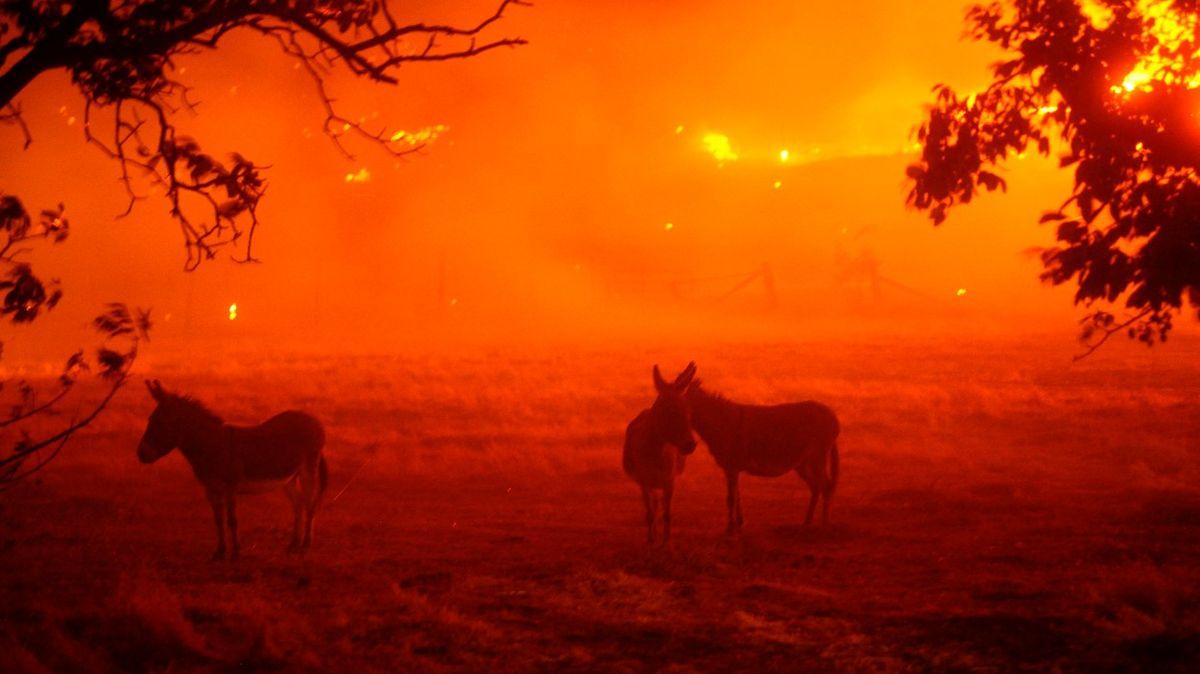 Fotky ohnivého pekla: Kalifornii bičují blesky, hoří stovky míst