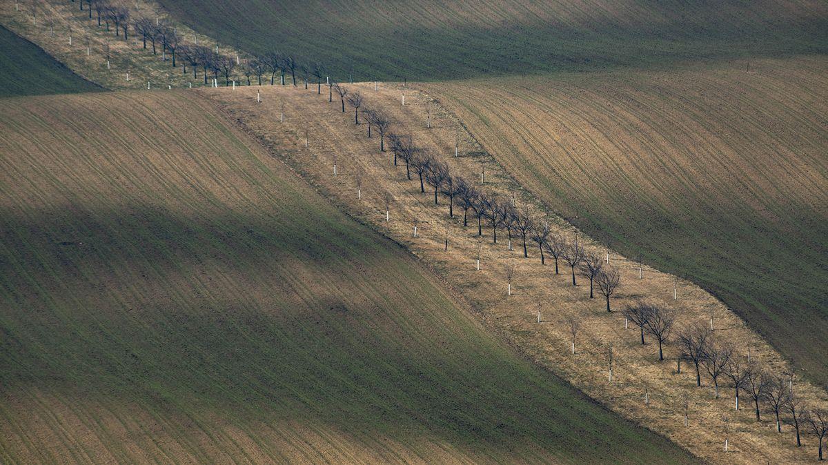 Obrazem: Moravské Toskánsko se probouzí do jara