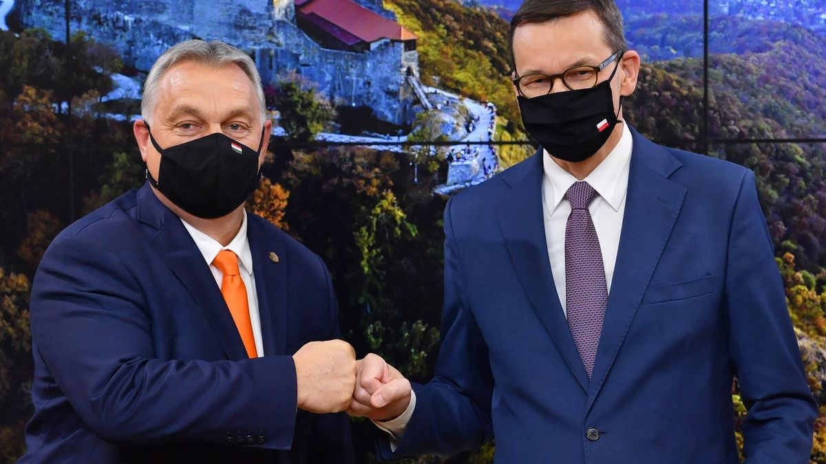 Unie si víc došlápne na podvody. Vzpírá se Maďarsko, Polsko nebo Slovinsko