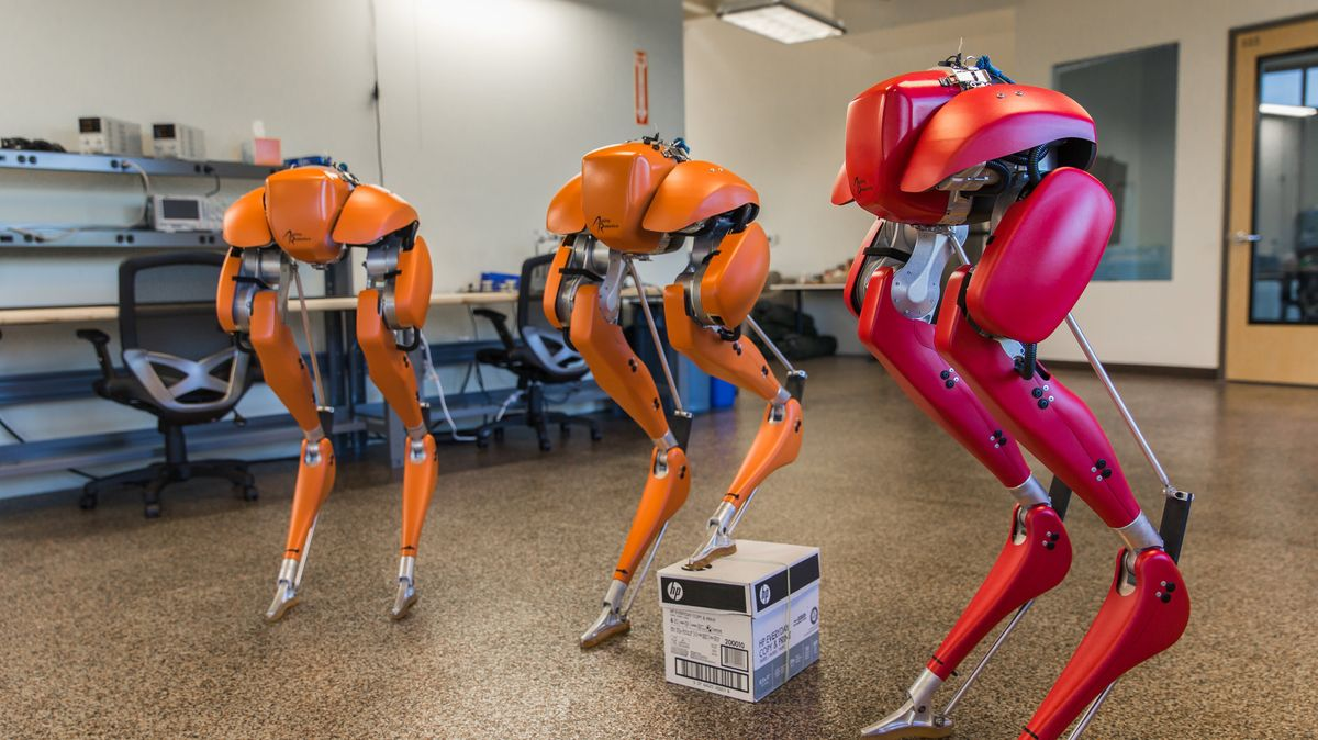 Takto běhá dosud nejrychlejší dvounohý robot. Jednou budou chodit okolo nás